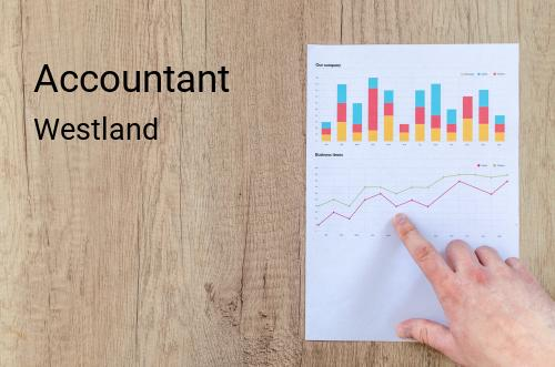 Accountant in Westland