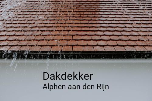 Dakdekker in Alphen aan den Rijn
