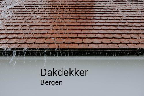 Dakdekker in Bergen
