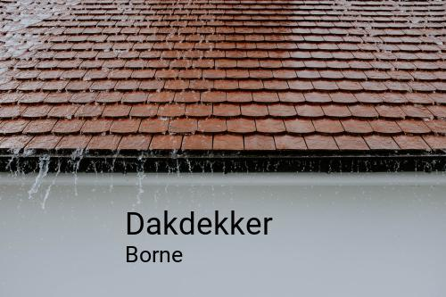 Dakdekker in Borne