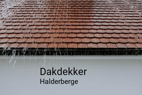Dakdekker in Halderberge