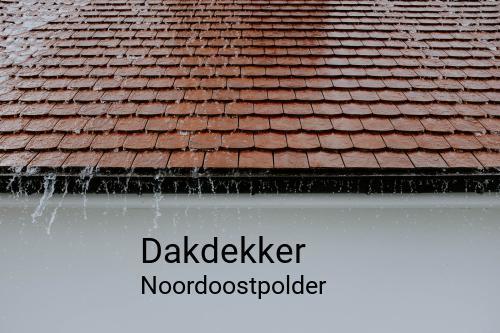 Dakdekker in Noordoostpolder