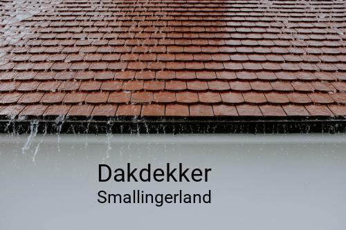 Dakdekker in Smallingerland