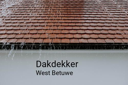 Dakdekker in West Betuwe