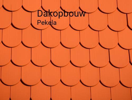 Dakopbouw in Pekela