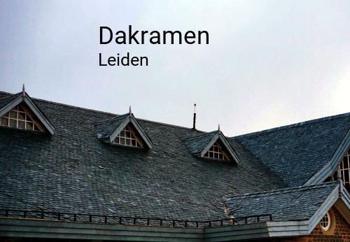 Foto van Dakramen in Leiden