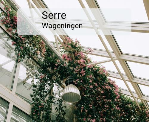 Serre in Wageningen