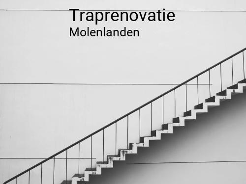 Traprenovatie in Molenlanden